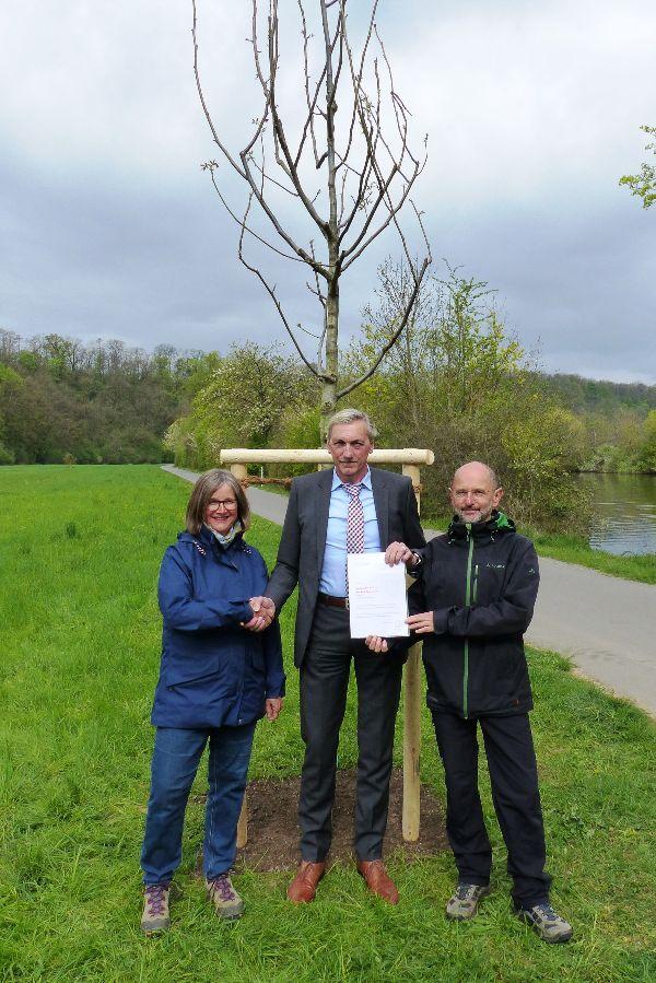 Jacqueline Wahl, Bürgermeister Karl Velte und Bernd Zimmermann (v.l.) vor dem ersten Jubiläumsbaum in Remseck am Neckar