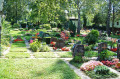 Friedhof Hochberg