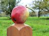 Gekennzeichnet ist der Obstwiesenweg Remseck am Neckar durch Holzstelen, die einen Apfel tragen. Foto: Stadt Remseck am Neckar